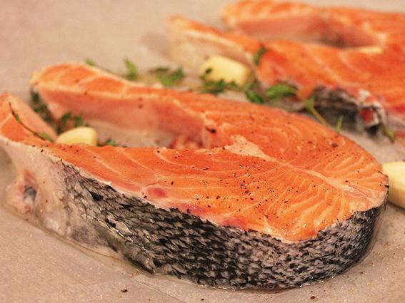 new salmon 2
