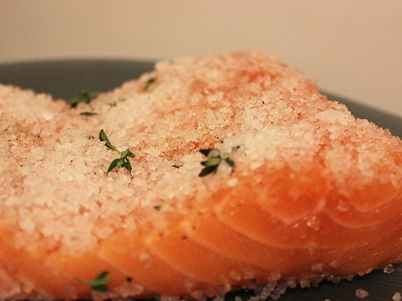 new salmon 3